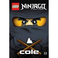 Ninjago - Cole