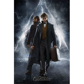 Poster Fantastic Beasts: The Crimes of Grindelwald - Newt & Dumbledore