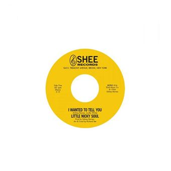 I Wanted to Tell You You Said - Single Vinil 7''