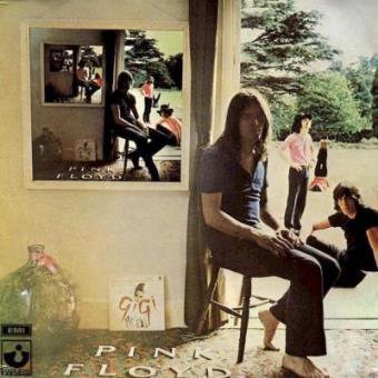 Pink Floyd - Ummagumma - Framed Album Cover