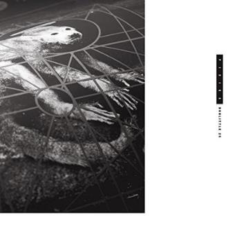 Doolittle 25 (25th Anniversary Edition 2LP) (180g