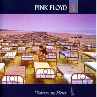 Pink Floyd - A Momentary Lapse Of Reason - Framed Album Cover