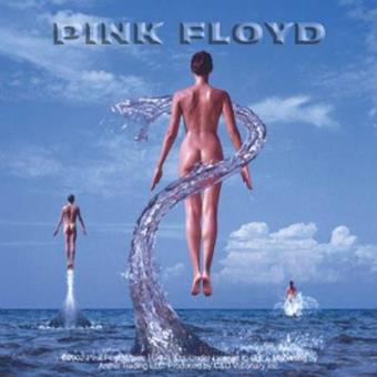 Pink Floyd - Shine On - Framed Album Cover