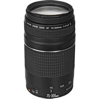 Canon Objetiva EF 75-300mm f/4-5.6 III