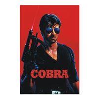 Cobra - O Braço Forte da Lei - DVD