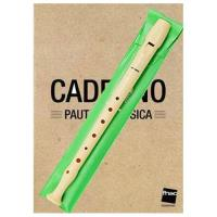 Pack Flauta de Bisel Hohner B9508 C + Caderno Pauta de Música