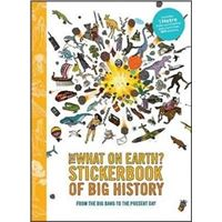 Big history timeline stickerbook