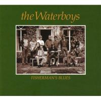 Fisherman's Blues (Collector's Edition) (2CD)