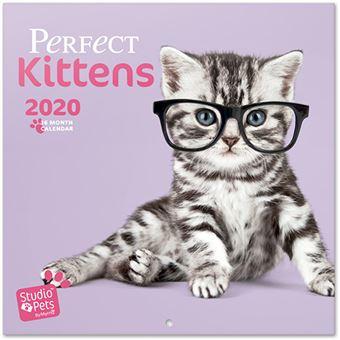 Calendário 2020 Studio Pets - Kittens