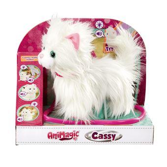 Cassy - A Minha Gatinha Passeio