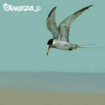 Olivenza (DGP)