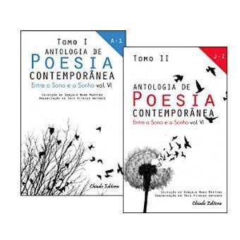Antologia de Poesia Contemporânea - Entre o Sono e o Sonho Vol 6