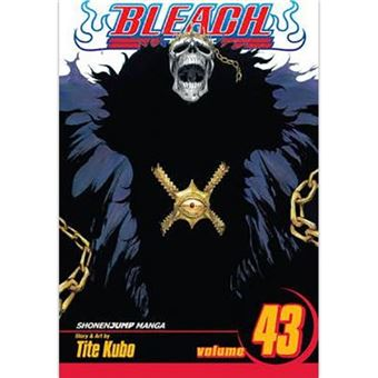 Bleach - Volume 43