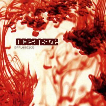 Effloresce - 2LP 12''