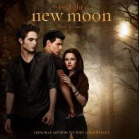 BSO Twilight New Moon