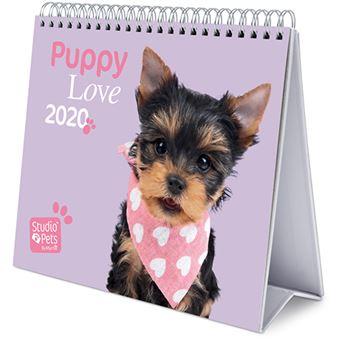 Calendário de Secretária Deluxe 2020 Studio Pets - Puppy Love