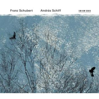 Schubert | Sonatas, Impromptus & Moments Musicaux (2CD)