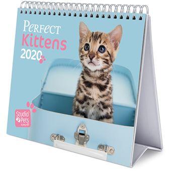 Calendário de Secretária Deluxe 2020 Studio Pets - Kittens