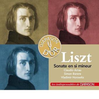 Liszt -piano sonatas