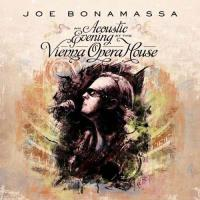 An Acoustic Evening At The Vienna Opera House (180g) (2LP)