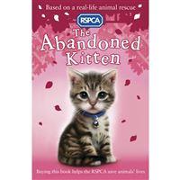 Abandoned kitten