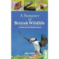 Summer of british wildlife
