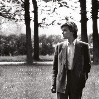 Brilliant Trees - LP 12''