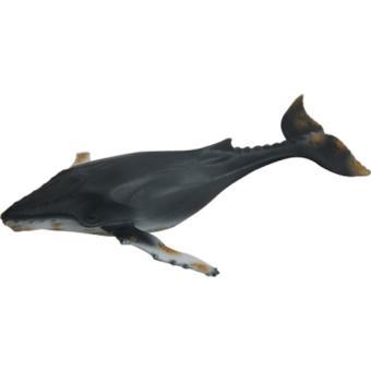 Planeta Animal Baleia-de-Bossa Grande 12,5cm - Science4you