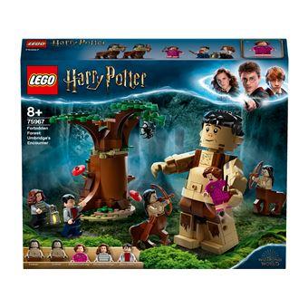 LEGO Harry Potter 75967 Floresta Proibida Encontro Umbridge