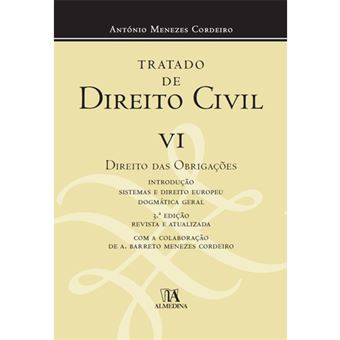 Tratado de Direito Civil - Livro 6