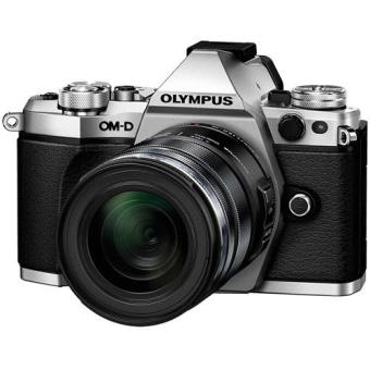 Olympus OM-D E-M5 Mark II + M.Zuiko Digital ED 12-50mm f/3.5-6.3 EZ - Prata