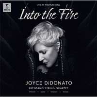 Into the Fire - CD