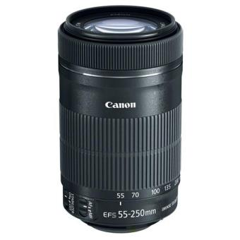 Canon Objetiva EF-S 55-250mm f/4-5.6 IS STM