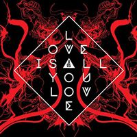 Love is All You Love - LP 12''