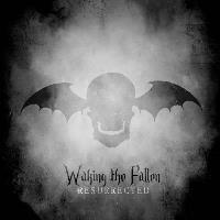 Waking the fallen (Limited Edition 4LP+DVD)