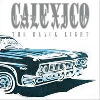 The Black Light - 20Th Anniversary - 2LP 180gr Clear Vinil 12''