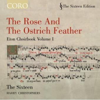 Rose & Ostrich Feather/et