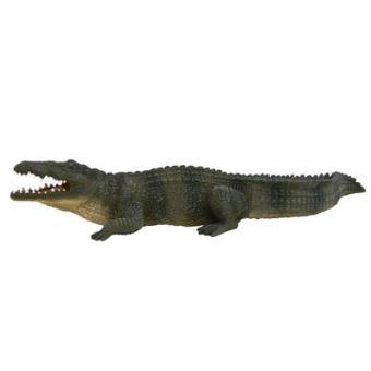 Crocodilo do Nilo
