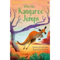Why the Kangaroo Jumps