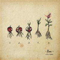 Rosa - LP 12''