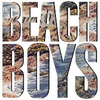 The Beach Boys (180g) (Limited Edition)