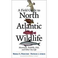 North atlantic wild