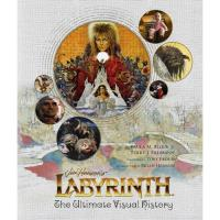 Labyrinth: the ultimate visual hist