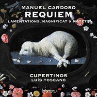 Manuel Cardoso: Requiem, Lamentations, Magnificat & motets - CD
