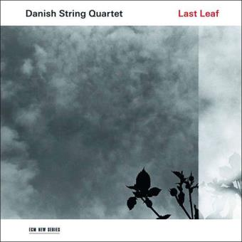 Last Leaf - CD