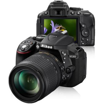 Nikon D5300 + AF-S DX 18-105mm f/3.5-5.6G ED VR