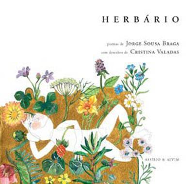 Resultado de imagem para herbário jorge sousa braga