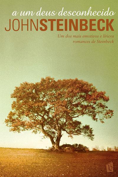 Resultado de imagem para a um deusdesconhecido livros do brasil
