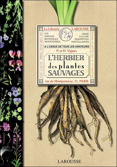 l'herbier des plantes sauvages - cartonné - pierre vignes, délia