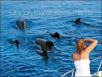 Grands mammifères marins de Méditerranée